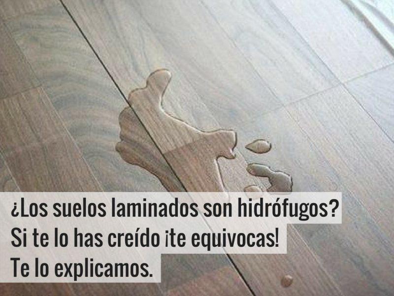 ¿Los suelos laminados son hidrófugos- Si te lo has creído ¡te equivocas! Te lo explicamos.